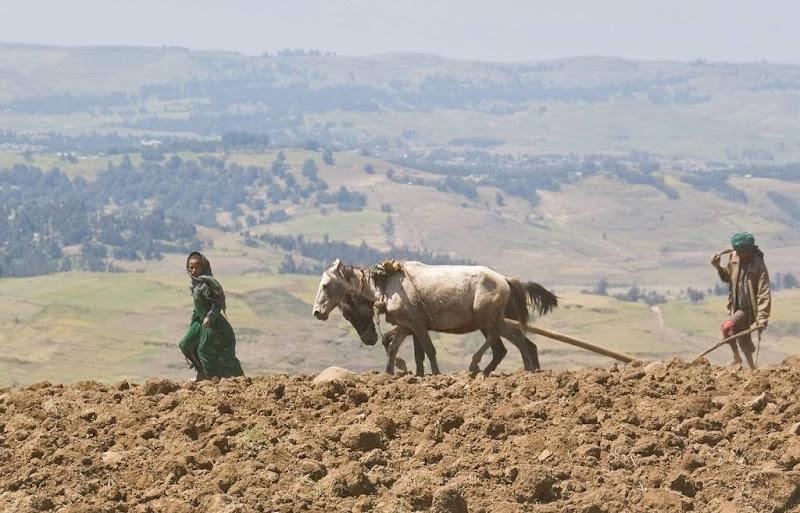 etiopia-deubandeira-14