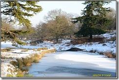 Bradgate Park D7000  11-02-2012 14-34-47