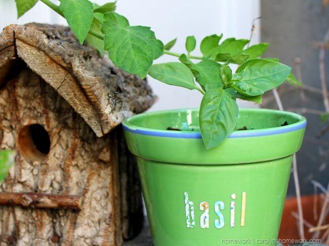 Lifestyle Crafts Herb Pot via homework - carolynshomework (11)