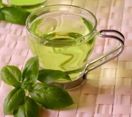 chá-oliveira