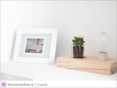 design-lamp-cacto-2 (1)