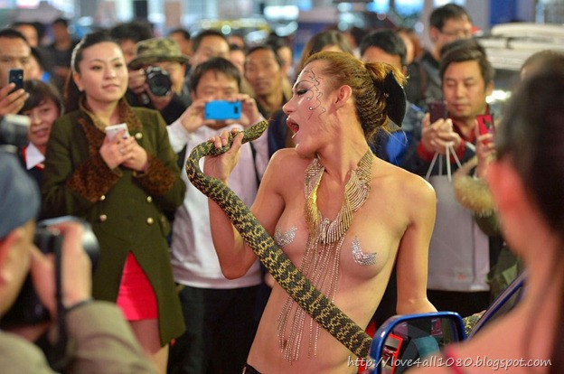 snake-quy-ty-2013-new-year (9)