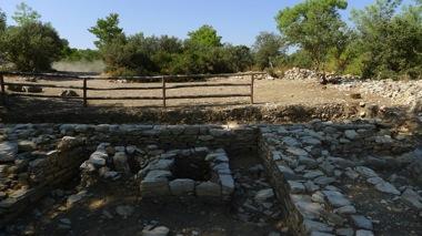 Pedesa Remains