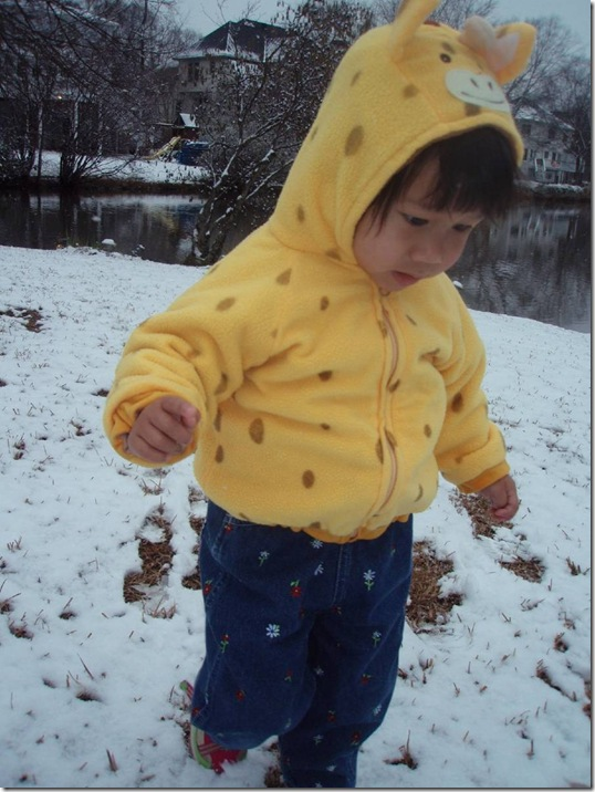 1 18 08 first snow.jpg_Thumbnail1  EEE
