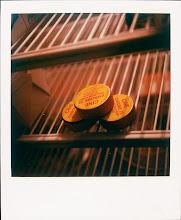 jamie livingston photo of the day September 13, 1995  ©hugh crawford