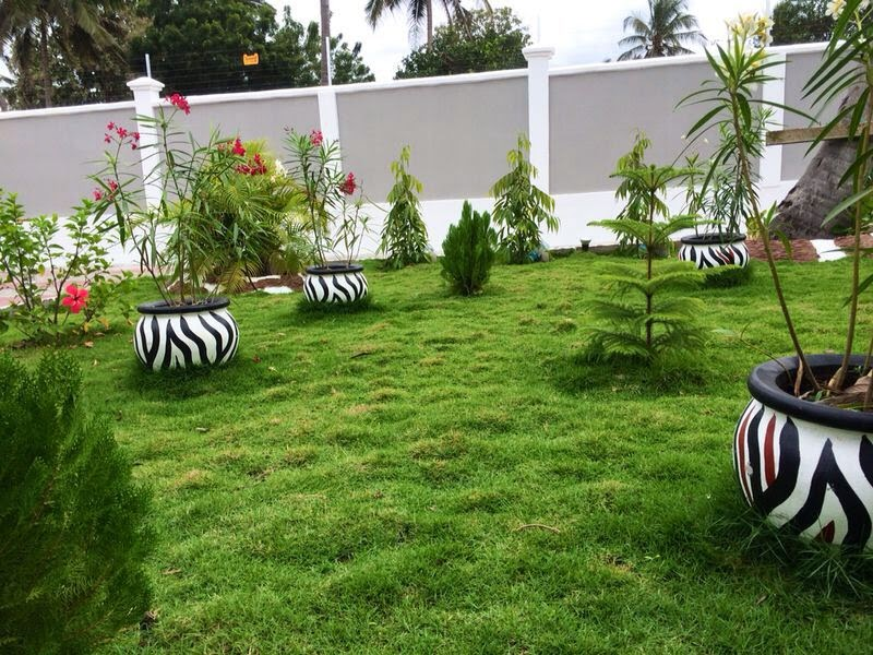 Ujenzi zone garden zinazorock ziko namna hii for Garden design za