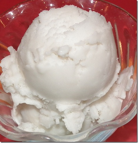 Coconut Ice Cream (SRC) Dairy Free 6-8-11