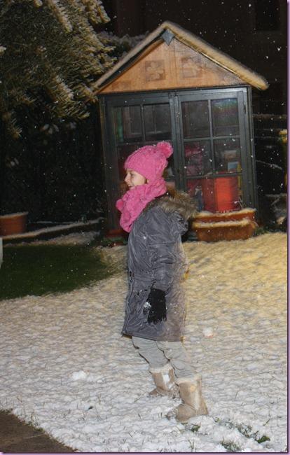 neve di notte (6) e ali