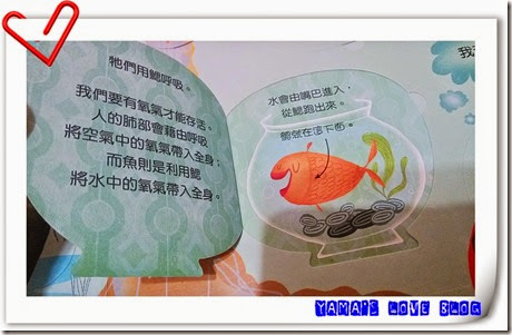 IMG_20141204_233442
