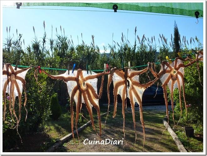 4-polp sec-cuinadiari-1