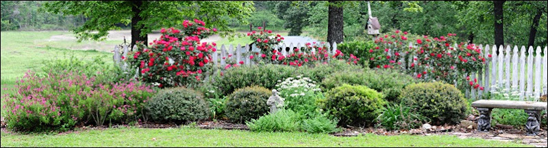 rose gardensm