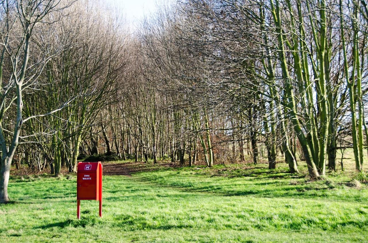 Green Chain Park