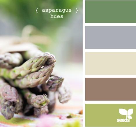AsparagusHues605