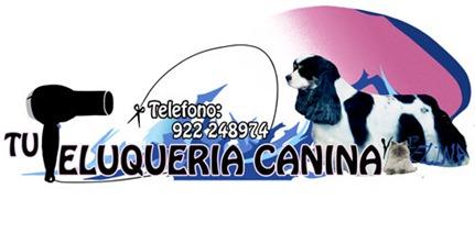 PELUQUERIA CANINA CURSO