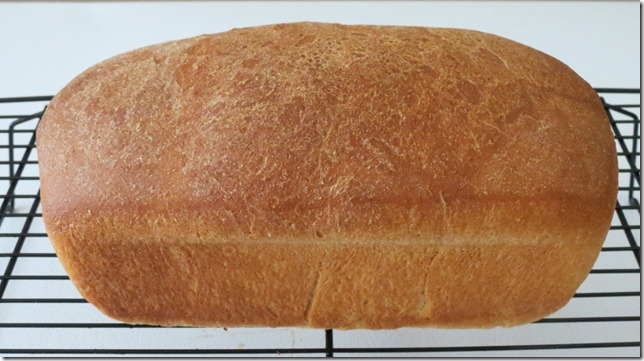 TWD--Whole Wheat Loaves 9-9-12