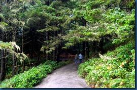 Cape Heceta (3)