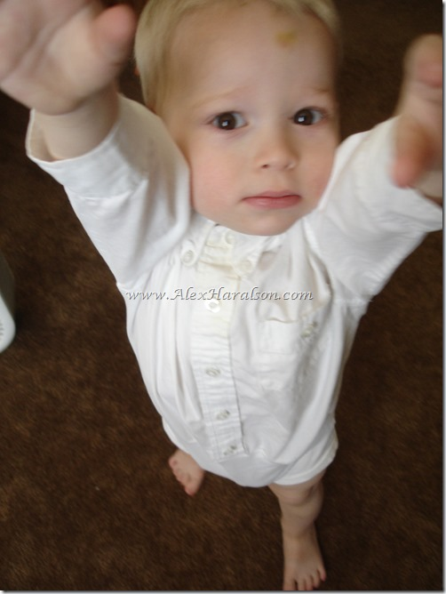 Always Tucked Little Boy's Dress Shirt10