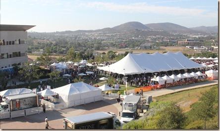 Stone 15th festival area