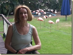 20121222_E and Flamingos (Small)
