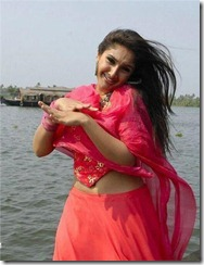 Sreedevi_Vijayakumar_image1
