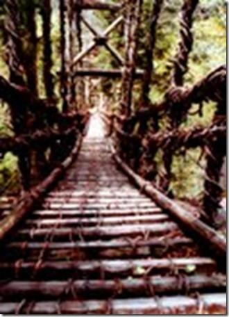 ponte 12