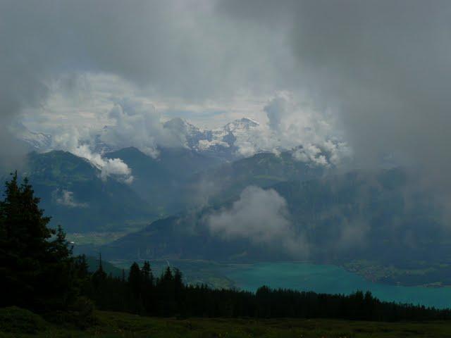 udsigt fra Niederhorn mod Jungfrau