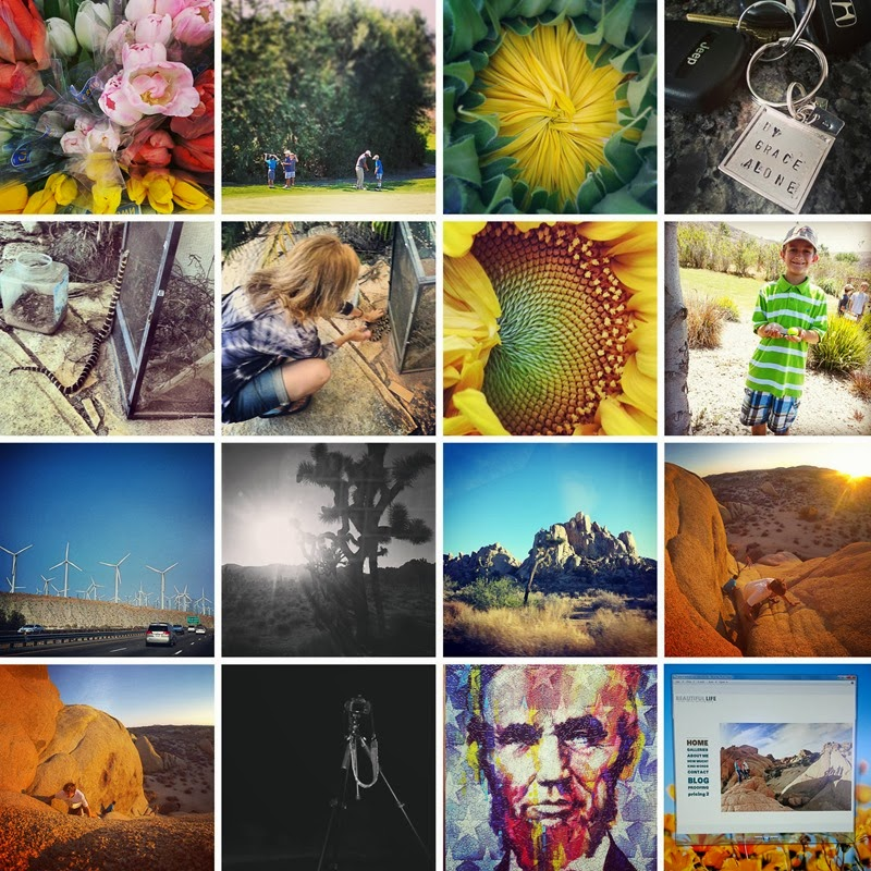 instagram august 2