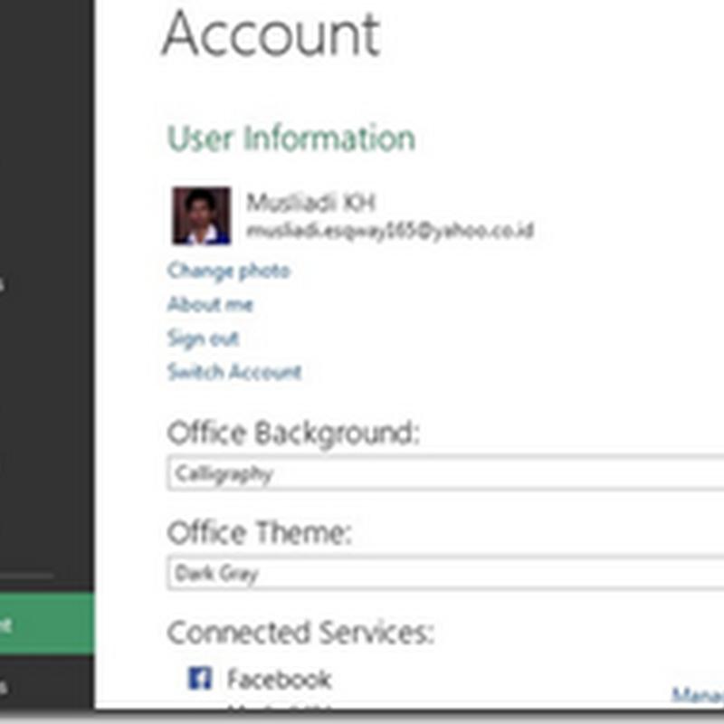 Mengganti Warna Tampilan Microsoft Excel 2013