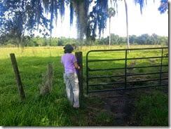 First gate