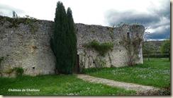 vestiges château-fort de Challeau