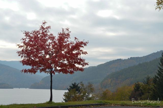 2013-10-24 Lake Kanayama 009