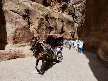 Obiective turistice Petra: Calesti prin Siq