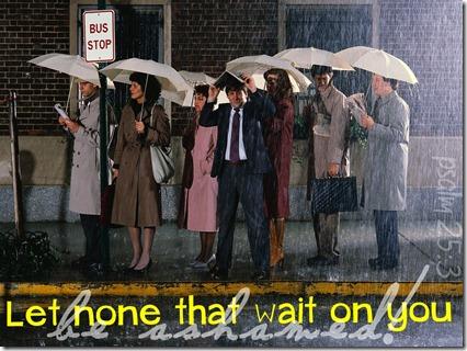 bus stop rain
