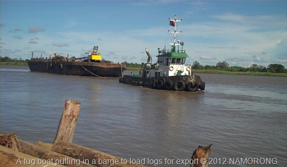A tug boat pulling in a barge to load logs for export © 2012 NAMORONG
