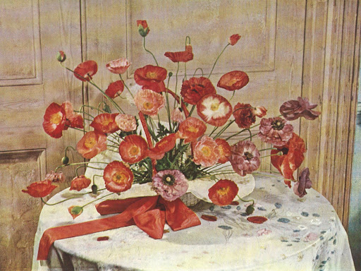 Constance Spry gathered a bunch of Shirley poppies into a white garden hat to make an arrangement for a young girls' party.  Ladylike, indeed.