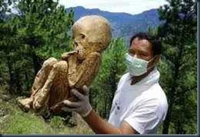 gigantes_cemiterio_africa