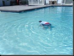 6-26-2011 swimming (2)