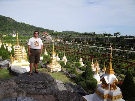 25. Gradina cu pagode.JPG