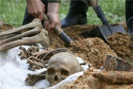 Краснодарском-крае-обнаружили-древнее-захоронение-воинов-в-доспехах