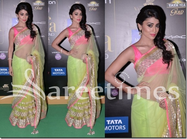 Shriya_Green_Manish_Malhotra_Saree