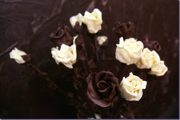 Rosas-Chocolate