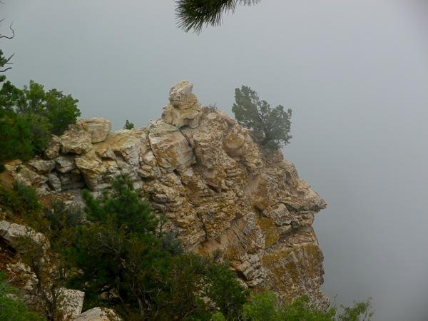 Transept Canyon Trail, North Rim Grand Canyon