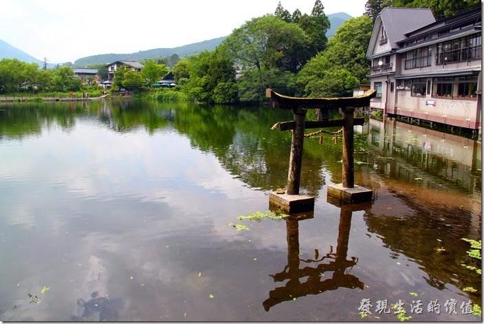 日本北九州-金鱗湖。從這個角度拍攝剛好可以看到完整的把鳥居及其倒影一起入境。
