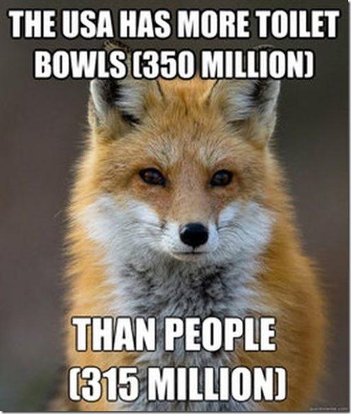 fox-facts-meme-45
