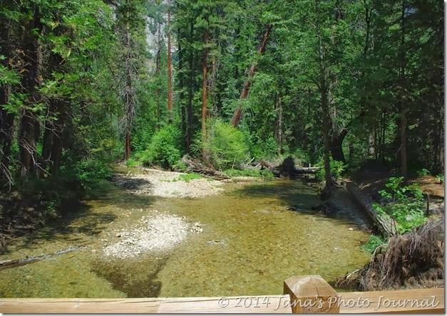Stream Along The Trail to Yosemite Falls