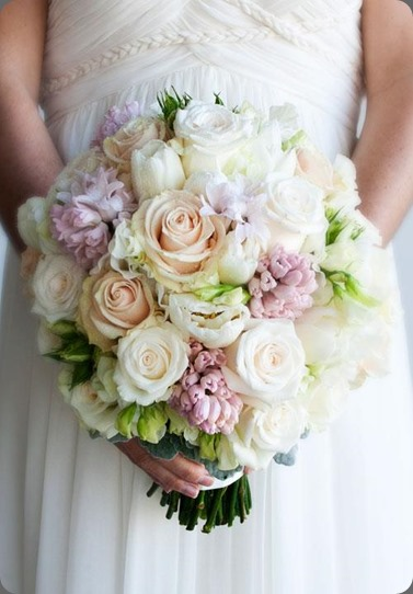 hyacinth 306920_160504877367286_1348838810_n hello blossoms au
