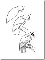 aprende dibujar anumales blogcolorear (4)