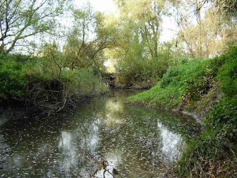 Meander Hornádu, Trstenné pri Hornáde