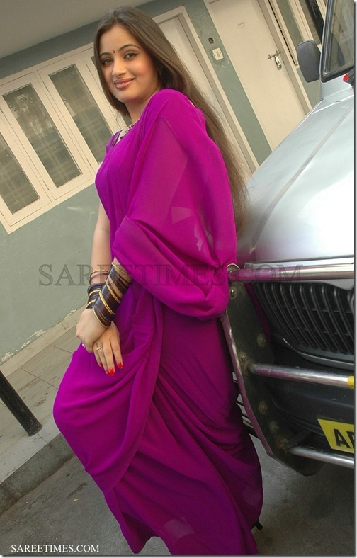 Navneet_Kaur_Purple_Plain_Saree (3)