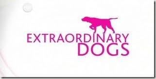 Cães extraordinários
